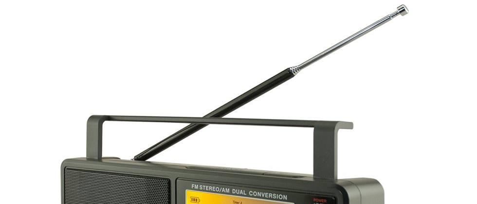 Which phones can play FM radio?
