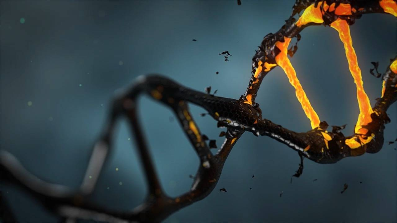 WHO reveals huge plan for human genome editing research registry