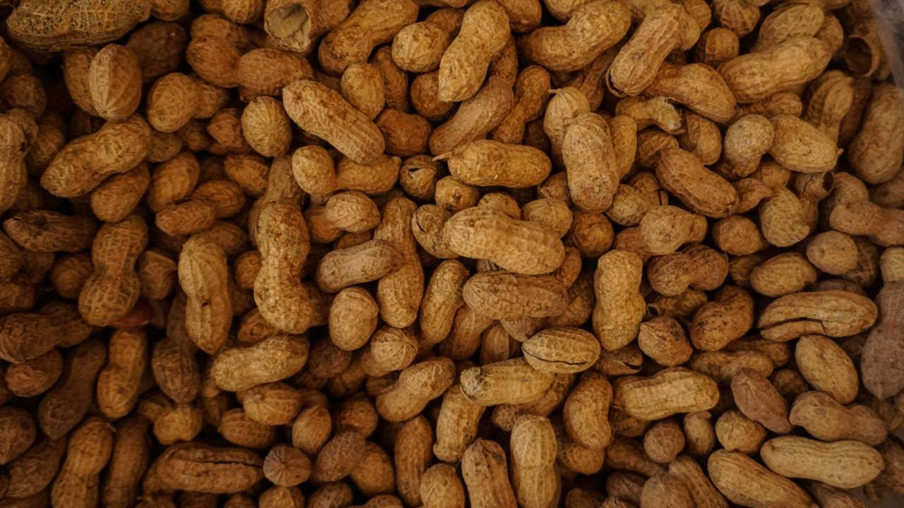 The FDA hasn't approved a peanut allergy treatment yet, but it's close