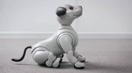 Sony aibo robot dog gets whimsical features in new major update