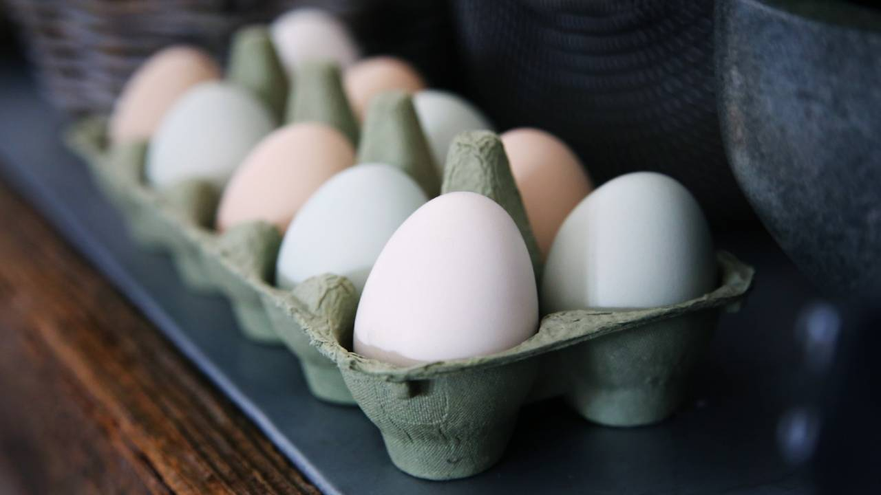 Another study finds eating several eggs a week isn't unhealthy