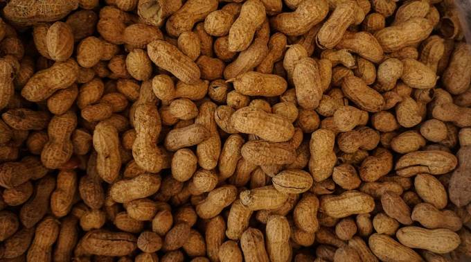 Palforzia, the first peanut allergy treatment, finally gets FDA approval