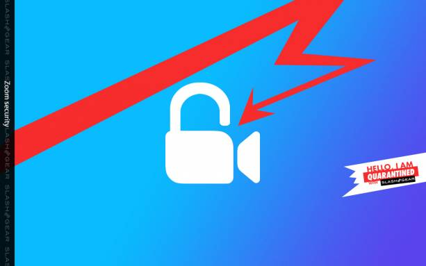 Zoom bans are latest bad news for video app